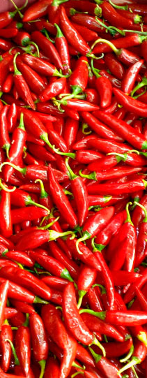 Firehorse Chilli Selection